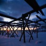 Winter sun silhouettes empty stockfish drying racks, Lofoten Islands, Norway