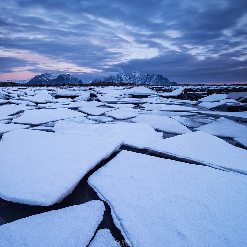 Frozen sea ice along winter coastline, near Nedredal, Vestvågøy, Lofoten Islands, Norway