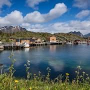 View over harbor towards Stamsund hostel, Stamsund, Vestvågøy, Lofoten Islands, Norway
