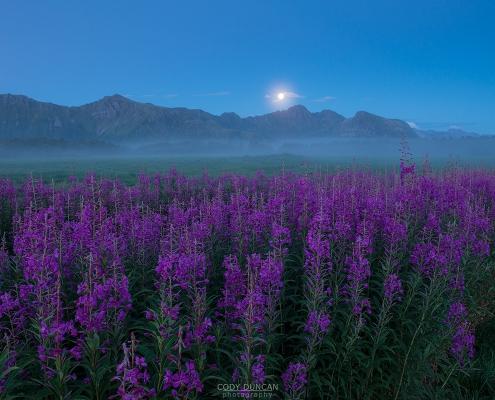 August Twilight - Friday Photo #293
