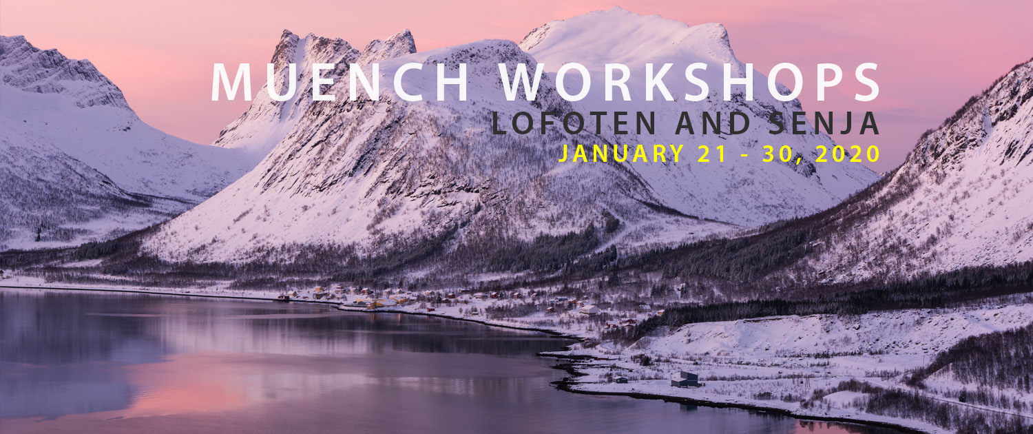 Lofoten And Senja Photo Tour 2020