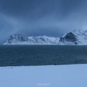 Winter Snow - Friday Photo #315