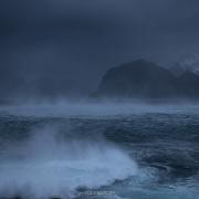 January storms - Friday Photo #365