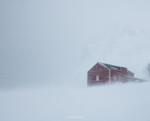 Winter Storm - Friday Photo #376