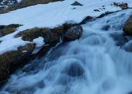 February Rain - Friday Photo #425