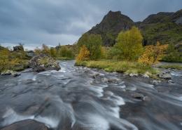 Early Autumn - Friday Photo #454
